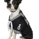 Veterans Pet Adoption Day Aboard the Battleship