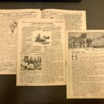 American Archives Month:  The Jerseyman